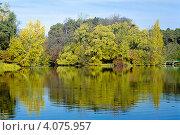 Купить «Деревья на берегу озера, отражающиеся в воде, золотой осенью», фото № 4075957, снято 18 августа 2019 г. (c) Михаил Марковский / Фотобанк Лори