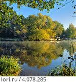 Купить «Пейзаж с деревьями на берегу озера солнечным осенним утром», фото № 4078285, снято 18 августа 2019 г. (c) Михаил Марковский / Фотобанк Лори