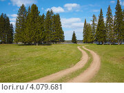 Дорога к реке. Стоковое фото, фотограф Павел Спирин / Фотобанк Лори