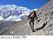 Купить «Непал, треккинг вокруг Анапурны в Гималаях.  Турист с рюкзаком идет по тропе.», фото № 4092781, снято 6 ноября 2012 г. (c) Овчинникова Ирина / Фотобанк Лори