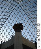 Галерея Лувр, Париж (2011 год). Редакционное фото, фотограф Сергей Шпаков / Фотобанк Лори