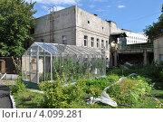 Купить «Парник для выращивания овощей на территории церкви Симеона Столпника за Яузой, Москва», эксклюзивное фото № 4099281, снято 23 июля 2012 г. (c) lana1501 / Фотобанк Лори