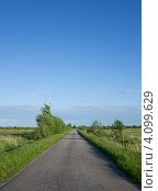 Дорога, уходящая в поле. Стоковое фото, фотограф Каменева Лариса / Фотобанк Лори