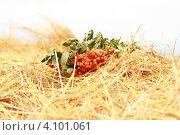 Рябина на сене. Стоковое фото, фотограф сергей саяпин / Фотобанк Лори
