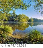 Купить «Пейзаж с деревьями на берегу озера солнечным осенним утром», фото № 4103525, снято 18 августа 2019 г. (c) Михаил Марковский / Фотобанк Лори