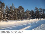 Купить «Зима в тайге. Югра», эксклюзивное фото № 4104397, снято 9 декабря 2012 г. (c) Валерий Акулич / Фотобанк Лори