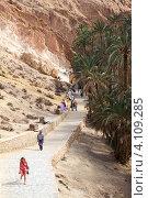 Спуск к водопаду в оазисе в горах Атлас, Chebika, Tunisia, Africa (2012 год). Редакционное фото, фотограф Кекяляйнен Андрей / Фотобанк Лори