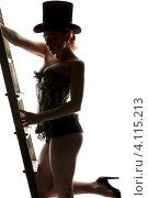 Купить «Привлекательная девушка в шляпе и корсете со стремянкой на белом фоне», фото № 4115213, снято 30 сентября 2009 г. (c) Syda Productions / Фотобанк Лори
