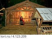 Купить «Ясли Христовы на традиционной рождественской ярмарке в Ульме (Ulmer Weihnachtsmarkt) на площади Мюнстерплатц у Ульмского собора (Германия)», фото № 4123209, снято 2 декабря 2012 г. (c) Владимир Сергеев / Фотобанк Лори