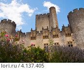 Рокитайяд. Замок во Франции недалеко от Бордо (2012 год). Стоковое фото, фотограф Виктор Андреев / Фотобанк Лори