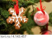 Купить «Пряничная снежинка на новогодней елке», фото № 4143457, снято 24 декабря 2012 г. (c) Константин Безденежных / Фотобанк Лори