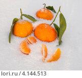 Купить «Мандарины с листочками в снегу», фото № 4144513, снято 20 декабря 2012 г. (c) Александра Васильева / Фотобанк Лори