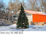 Новогодняя елка в Парке Горького. Москва (2012 год). Стоковое фото, фотограф lana1501 / Фотобанк Лори