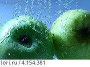 Купить «Зеленые яблоки в воде», фото № 4154381, снято 31 июля 2008 г. (c) Иван Михайлов / Фотобанк Лори