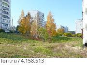 Осень в городе Иркутске, микрорайон Зеленый (2012 год). Стоковое фото, фотограф Алина Сысоева / Фотобанк Лори