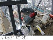 Сварщик за работой. Стоковое фото, фотограф Роза Ибрагимова / Фотобанк Лори