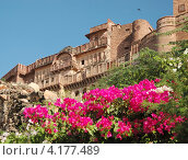 Форт Мехрангарх в голубом городе Джодхпуре, Раджастан, Индия (2012 год). Стоковое фото, фотограф крижевская юлия валерьевна / Фотобанк Лори