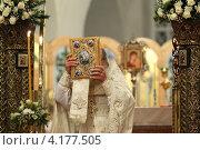 Купить «Шамордино, праздничная Рождественская литургия в Казанском соборе», эксклюзивное фото № 4177505, снято 26 мая 2010 г. (c) Дмитрий Неумоин / Фотобанк Лори
