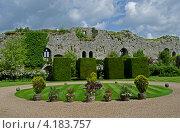 Средневековая стена английского замка. Стоковое фото, фотограф Татьяна Фелпс / Фотобанк Лори