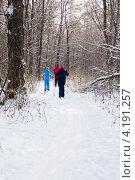 Купить «Прогулка на лыжах по зимнему лесу», фото № 4191257, снято 13 января 2013 г. (c) Дудакова / Фотобанк Лори