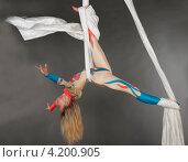 Купить «Девушка выполняет трюк на полотнах», фото № 4200905, снято 16 сентября 2012 г. (c) Литвяк Игорь / Фотобанк Лори