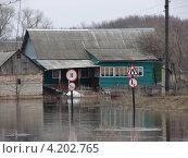 Купить «Половодье на реке Медведице», фото № 4202765, снято 8 апреля 2010 г. (c) Александр Башкатов / Фотобанк Лори