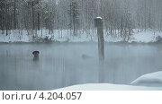 Купить «Теплое озеро», видеоролик № 4204057, снято 18 января 2013 г. (c) Кекяляйнен Андрей / Фотобанк Лори