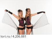 Купить «Две девушки в эротических нарядах», фото № 4206881, снято 12 января 2013 г. (c) Литвяк Игорь / Фотобанк Лори