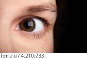 Купить «Женские карий глаз крупный планом», фото № 4210733, снято 15 января 2013 г. (c) EugeneSergeev / Фотобанк Лори