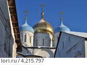 Купить «Новоспасский монастырь, Москва», эксклюзивное фото № 4215797, снято 16 декабря 2012 г. (c) lana1501 / Фотобанк Лори