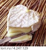 Купить «Французский сыр камамбер и нож», фото № 4247129, снято 22 июля 2019 г. (c) Food And Drink Photos / Фотобанк Лори