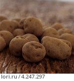 Купить «Неочищенный картофель крупным планом», фото № 4247297, снято 16 января 2019 г. (c) Food And Drink Photos / Фотобанк Лори