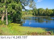 Купить «Осенний пейзаж с прудом», эксклюзивное фото № 4249197, снято 1 сентября 2012 г. (c) Елена Коромыслова / Фотобанк Лори