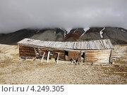 Заброшенный дом на Шпицбергене (2012 год). Стоковое фото, фотограф Наталия Давидович / Фотобанк Лори