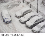 Купить «Снегопад в Москве, машины на парковке, район Новокосино», эксклюзивное фото № 4251433, снято 29 января 2013 г. (c) lana1501 / Фотобанк Лори