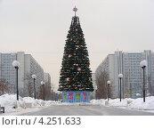 Купить «Новогодняя елка в парке, улица Городецкая, район Новокосино, Москва», эксклюзивное фото № 4251633, снято 29 января 2013 г. (c) lana1501 / Фотобанк Лори