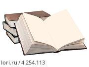 Купить «Раскрытая книга без текста», эксклюзивное фото № 4254113, снято 31 января 2013 г. (c) Юрий Морозов / Фотобанк Лори