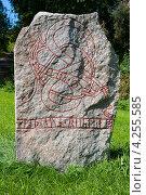 Купить «Древний рунический камень. Швеция», фото № 4255585, снято 30 августа 2008 г. (c) Andrei Nekrassov / Фотобанк Лори