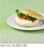 Купить «Круглая булка с яйцом, помидорами, кресс-салатом и майонезом с горчицей», фото № 4256129, снято 24 января 2020 г. (c) Food And Drink Photos / Фотобанк Лори