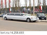 Купить «Белый лимузин на заказ припаркован на обочине дороги среди машин», фото № 4258693, снято 24 ноября 2012 г. (c) Светлана Кузнецова / Фотобанк Лори