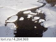 Купить «Незамерзающая речка в солнечный зимний день», эксклюзивное фото № 4264969, снято 6 марта 2010 г. (c) Солодовникова Елена / Фотобанк Лори