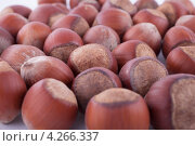 Купить «Фон из орехов фундук», фото № 4266337, снято 4 января 2013 г. (c) Литвяк Игорь / Фотобанк Лори