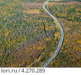 Купить «Дорога через осенний лес», фото № 4270289, снято 15 сентября 2011 г. (c) Владимир Мельников / Фотобанк Лори