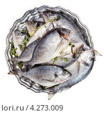Купить «Рыба дорадо на тарелке», фото № 4273009, снято 2 февраля 2013 г. (c) Дмитрий Наумов / Фотобанк Лори