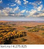 Купить «Автодорога в осеннем лесу», фото № 4275825, снято 8 сентября 2011 г. (c) Владимир Мельников / Фотобанк Лори