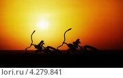 Купить «Концепт романтической открытки: два велосипеда на фоне закатного неба», фото № 4279841, снято 14 сентября 2012 г. (c) pzAxe / Фотобанк Лори