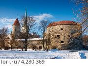 Вид на заснеженный город. Таллин. Эстония (2012 год). Стоковое фото, фотограф Andrei Nekrassov / Фотобанк Лори
