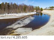 Купить «Весенний пейзаж», фото № 4285605, снято 12 апреля 2012 г. (c) Икан Леонид / Фотобанк Лори