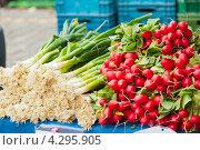 Свежие овощи. Стоковое фото, фотограф Olha Ukhal / Фотобанк Лори