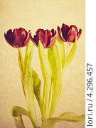 Винтажные тюльпаны. Стоковая иллюстрация, иллюстратор Olha Ukhal / Фотобанк Лори